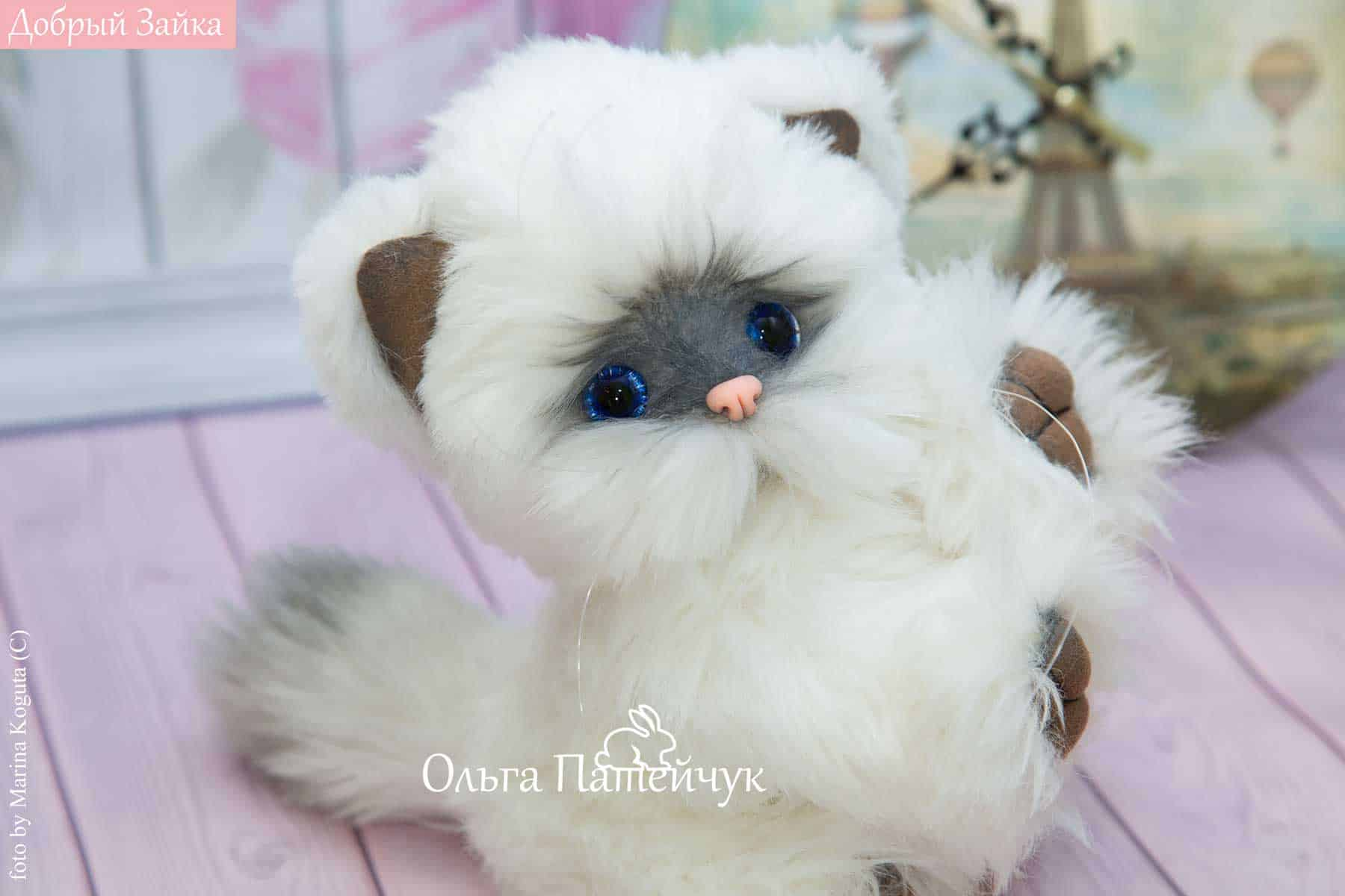 Котенок по имени Облачко